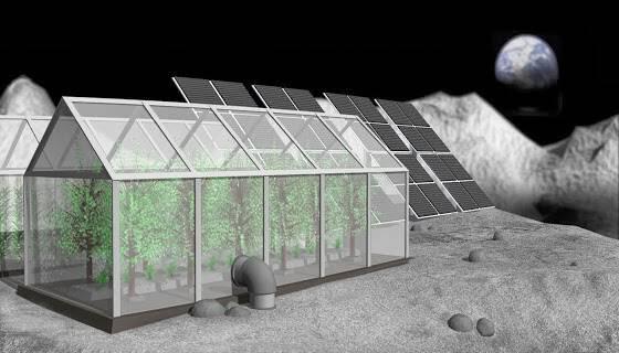 H Nasa σχεδιάζει καλλιέργειες φυτών στη Σελήνη!