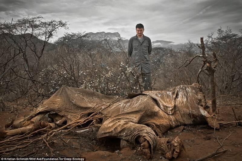 tilestwra.com | 27 εικόνες που δείχνουν πως η ανθρωπότητα βρίσκεται σε κίνδυνο.