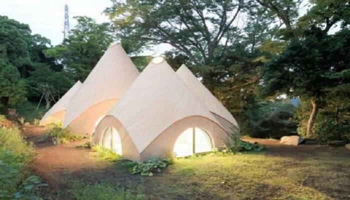 Συνταξιούχες γυναίκες ζούνε μια «ονειρεμένη ζωή» σε αυτό το σπίτι στο δάσος που σχεδίασε Ιάπωνας αρχιτέκτονας (PHOTOS)