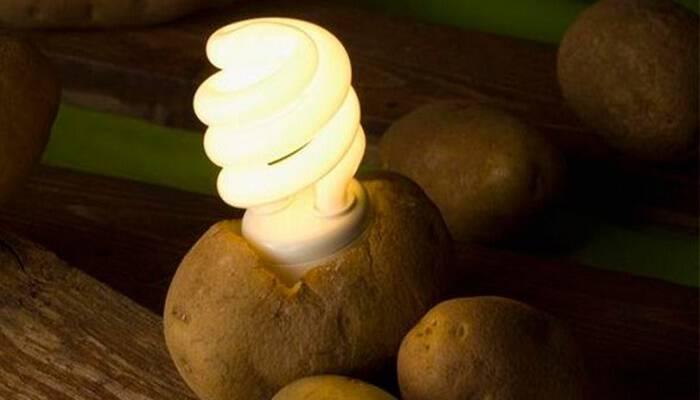 Φοβερό Κόλπο: Δείτε ΠΩΣ με μία μόνο Πατάτα θα έχετε ΔΩΡΕΑΝ Φως στο δωμάτιο σας, για πάνω από 1 Μήνα!