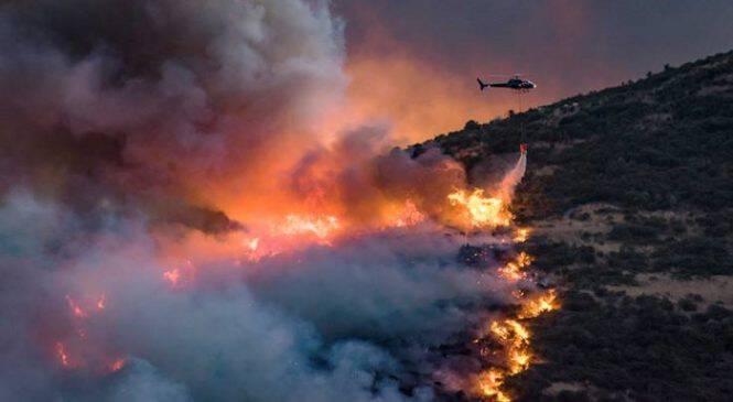 Πώς ένα γεράκι και ένα φίδι ξεκίνησαν μια μεγάλη φωτιά