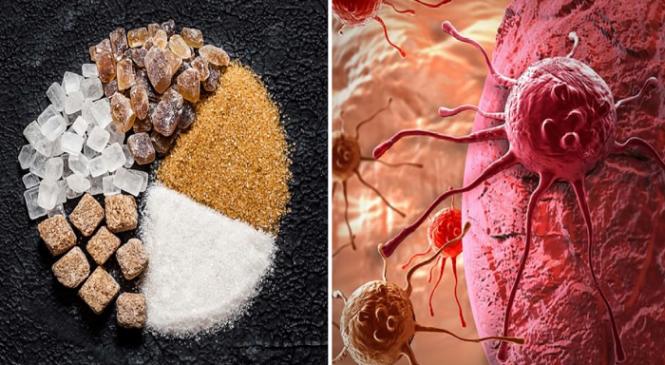 Η τροφή που πολλαπλασιάζει τα καρκινικά κύτταρα