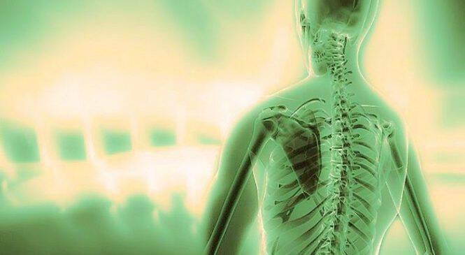 Σπονδυλική στήλη: Το μήνυμα του κάθε σπονδύλου για τη ζωή μας