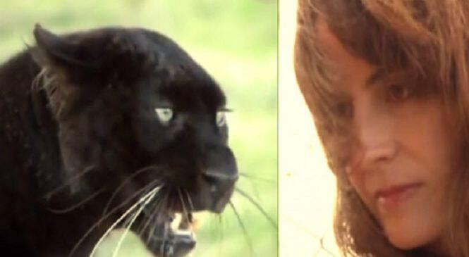 Κανείς δεν μπορούσε να πλησιάσει το κλουβί αυτής της λεοπάρδαλης! Ώσπου μία μέρα αυτή η γυναίκα έκανε κάτι απίστευτο…