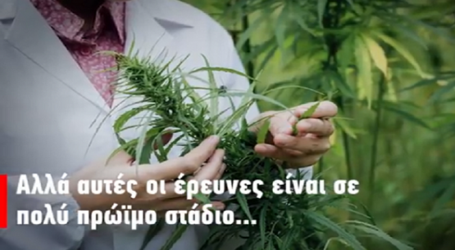 Φάρμακο ή μόδα: Όλες οι αλήθειες και τα ψέματα για την φαρμακευτική κάνναβη! (BINTEO)